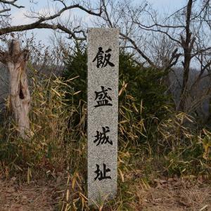 主郭周辺の石垣探しは当然の楽しみ 飯盛山城