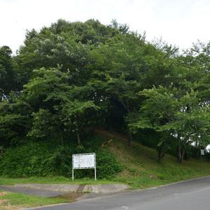 設楽原 連吾川脇の丸山砦 小さなぼた山 古墳?