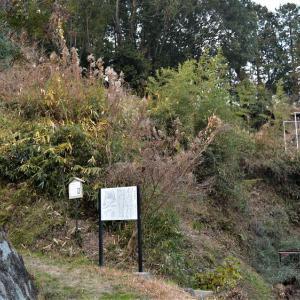 田原城 台地先端も根本方向の脆弱性は飯盛山の存在