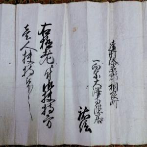 「一向宗」と米寿一人扶持 そして長寿草