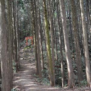 日吉神社裏山「塔の森」 奈良~平安期の十三重塔
