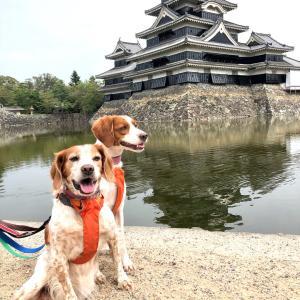 10月は松本城経由で山中湖