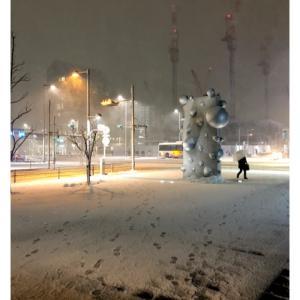 雪 / 2018.1.28