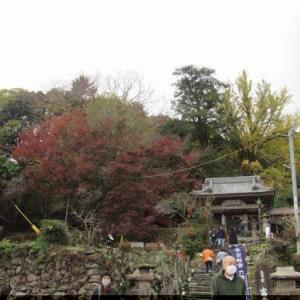 富貴寺の紅葉