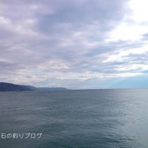 中サバの数釣り!@大蔵海岸
