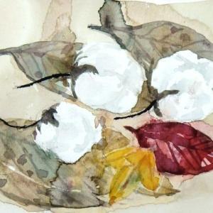 綿花と落ち葉