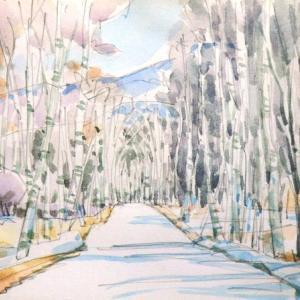白樺林に一本道