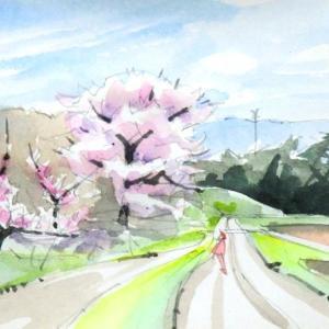 桃と桜を眺む