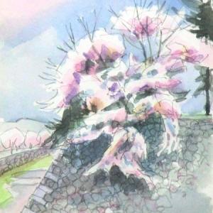 桜-名古屋城