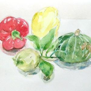 野菜ゴロゴロ