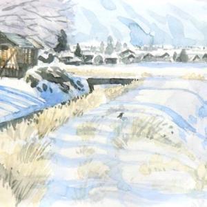雪景色にカラス
