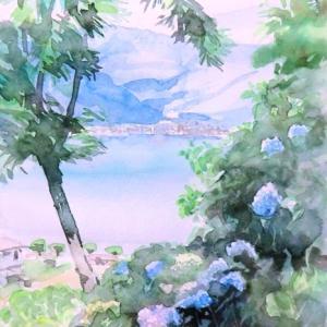 諏訪湖を彩る紫陽花
