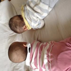 双子の育児   よく声をかけられる