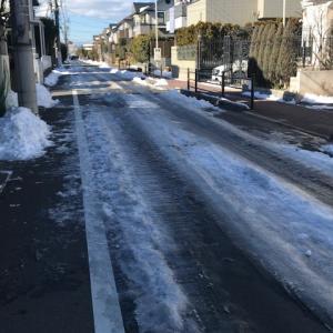 長野県民、東京の残雪に驚く