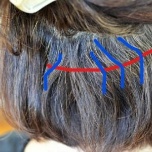 根折れと癖の戻りを解消して美髪に…