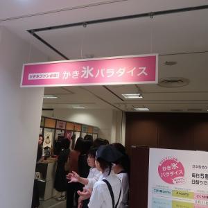 新宿「cocoo・cafe コクウカフェ」アーモンドフロランタン