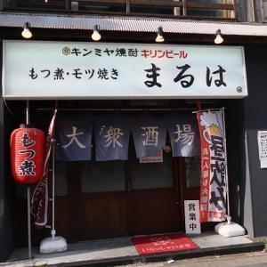 千葉中央「大衆酒場・まるは」生さば刺