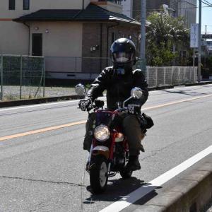 行田市・プチ観光です。