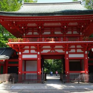 【東京散歩】杉並・井草八幡宮 都内の神社巡り