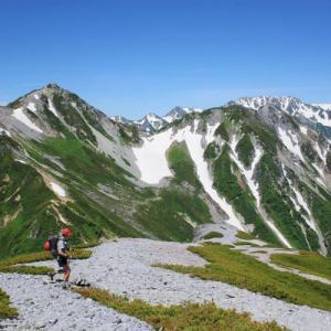 【北アルプス】蓮華岳〜針ノ木岳 コマクサ満開の稜線へトラウマ克服登山