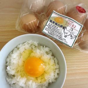 絶品高級卵「烏骨鶏の卵」が産地直送でお手頃に♪