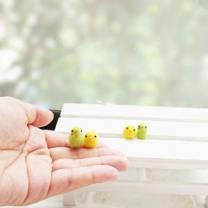 【羊毛フェルト】小さなひよことセキセイインコ