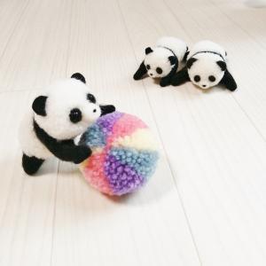 カラフルボールとパンダのポンポン