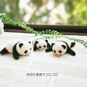 【ぬい撮り】あつ~~いパンダの親子