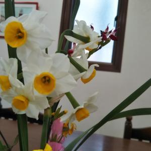 「ママ達のお話お茶会」1月~1.17の思い出