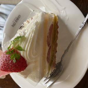 カシウ ショートケーキ