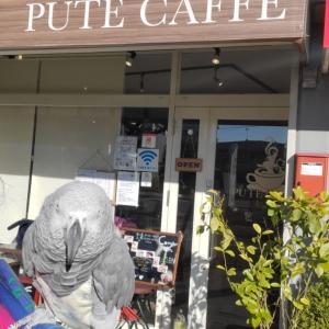 2020.01.09 PUTE CAFFE