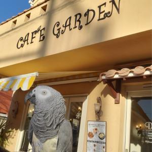 2020.01.09 CAFE GARDEN