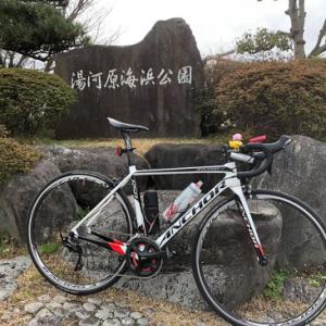 箱根周回・椿ラインヒルクライムへ行ってきました