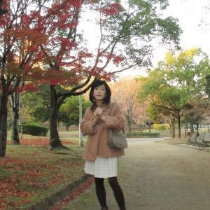 姫路城の紅葉