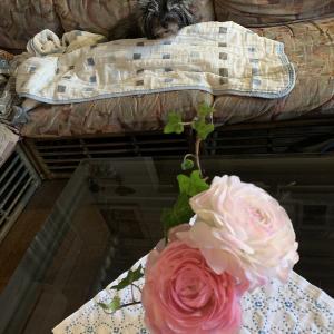 花とチャーリー 花とルーシー