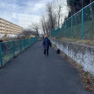練馬ミッション4 ばーちゃんと川散歩