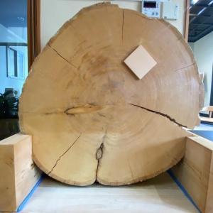 天然木材を扱える技術③ (木の特性)