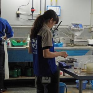 サンシャイン水族館の年パスイベント「感謝フェア」最終日