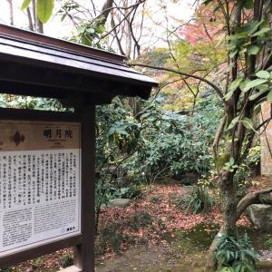北鎌倉 明月院