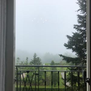 霧の山中湖