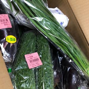 愛のお野菜