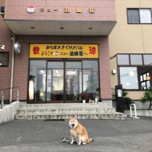 南三陸町・ニュー泊崎荘