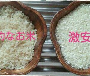 【楽天購入品レビュー★】お得米!激安お米30kgで3399円!