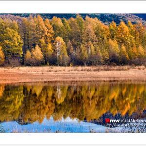 湖面に写る秋