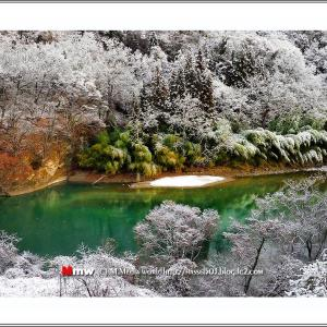 淡雪の彩り