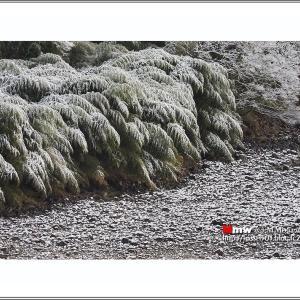 淡雪の情景
