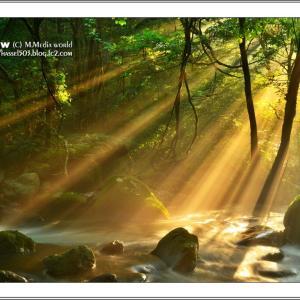 光芒射す山峡