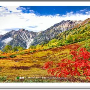 秋色の栂池高原