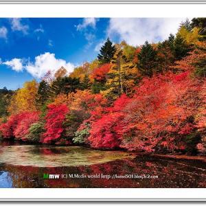 秋彩の湖畔