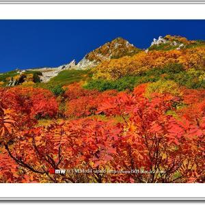 秋色の千畳敷カール